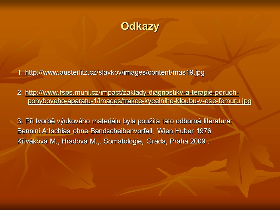 Odkazy 1. http://www.austerlitz.cz/slavkov/images/content/mas19.jpg 2.