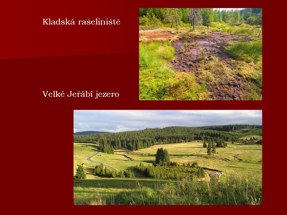 Kladská rašeliniště Velké Jeřábí jezero