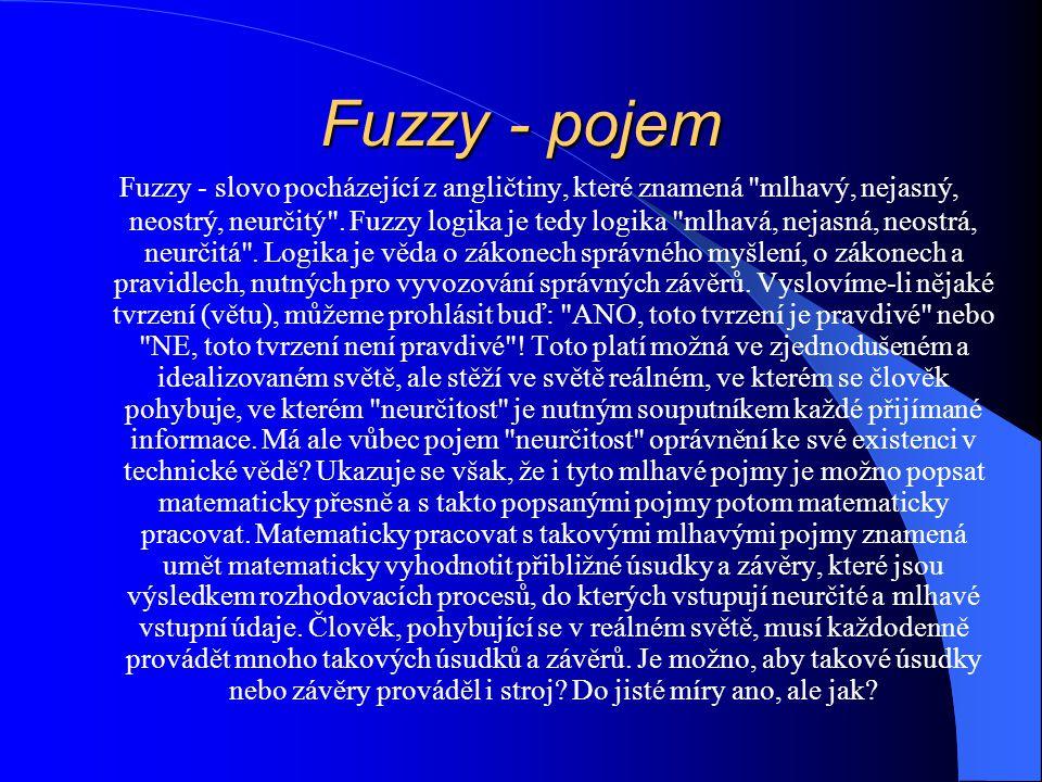 Fuzzy - pojem Fuzzy - slovo pocházející z angličtiny, které znamená mlhavý, nejasný, neostrý, neurčitý .