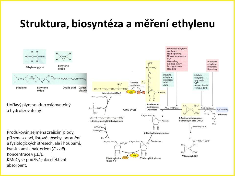 Struktura, biosyntéza a měření ethylenu Hořlavý plyn, snadno oxidovatelný a hydrolizovatelný! Produkován zejména zrajícími plody, při senescenci, list