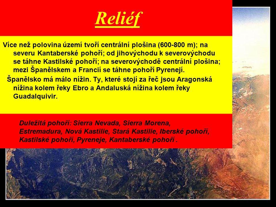 Reliéf Více než polovina území tvoří centrální plošina (600-800 m); na severu Kantaberské pohoří; od jihovýchodu k severovýchodu se táhne Kastilské po
