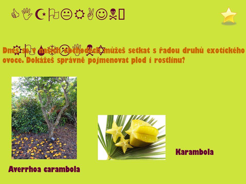 CIZOKRAJNÉ ROSTLINY Dnes se v našich obchodech můžeš setkat s řadou druhů exotického ovoce. Dokážeš správně pojmenovat plod i rostlinu? Karambola Aver