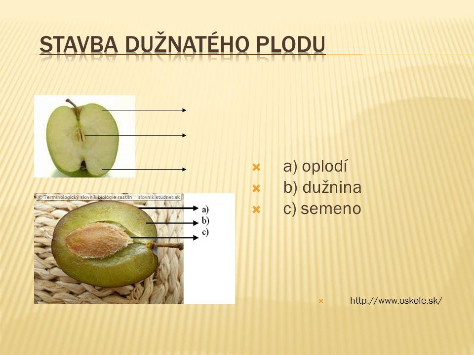  a) oplodí  b) dužnina  c) semeno  http://www.oskole.sk/