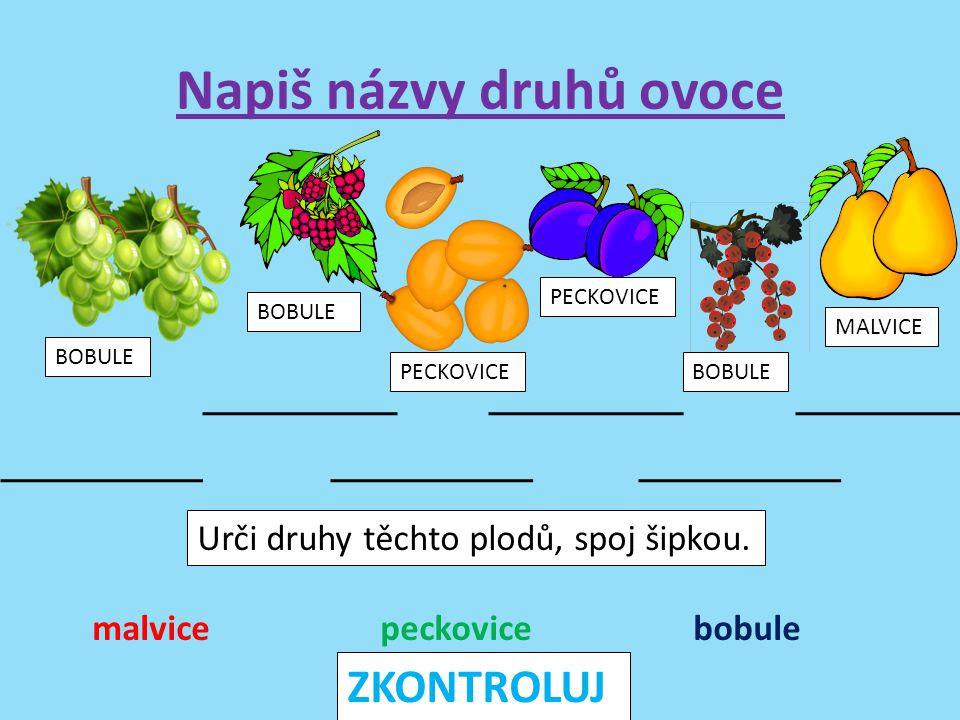 Napiš do sešitu 8 druhů ovoce S některými z nich utvoř věty a urči jejich druhy (O, T, R, P) Pokud jsi hotov, můžeš očíslovat druhy ovoce podle abecedy (tužkou nad slova).