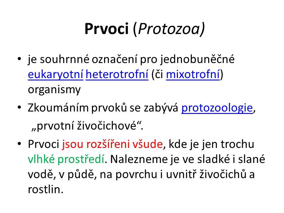 Prvoci (Protozoa) Klasifikace prvoků prošla v posledních letech značným vývojem a dnes se prvoci řadí do několika eukaryotních víceméně přirozených superskupin, především pak: přirozených