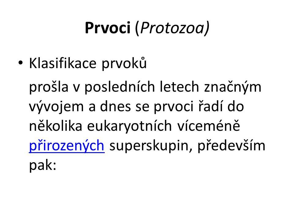 Prvoci (Protozoa) Klasifikace prvoků prošla v posledních letech značným vývojem a dnes se prvoci řadí do několika eukaryotních víceméně přirozených su