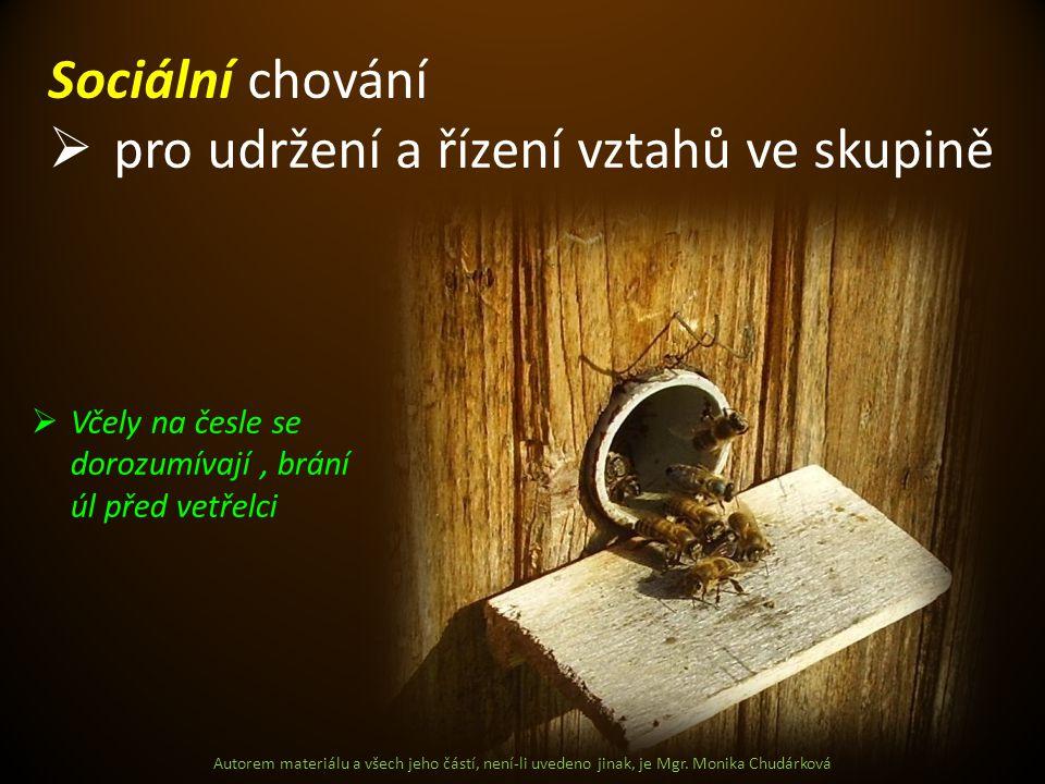 Autorem materiálu a všech jeho částí, není-li uvedeno jinak, je Mgr. Monika Chudárková Sociální chování  pro udržení a řízení vztahů ve skupině  Vče