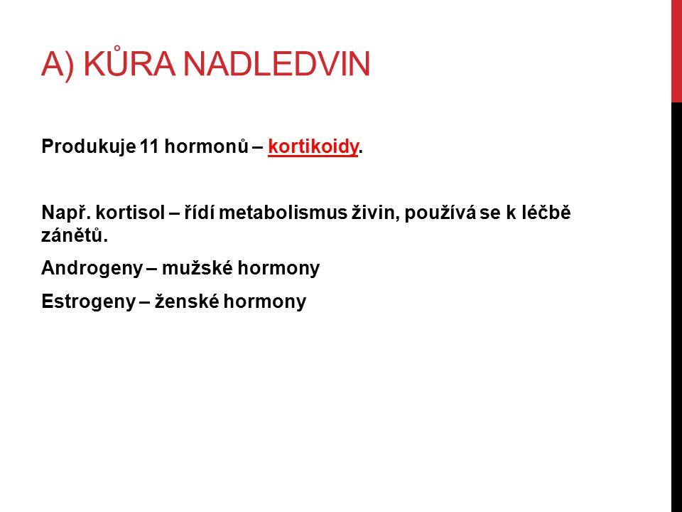 A) KŮRA NADLEDVIN Produkuje 11 hormonů – kortikoidy.