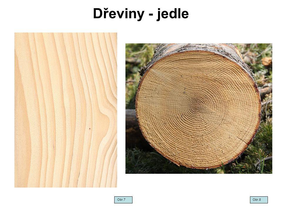 Dřeviny - jedle Obr.7Obr.8