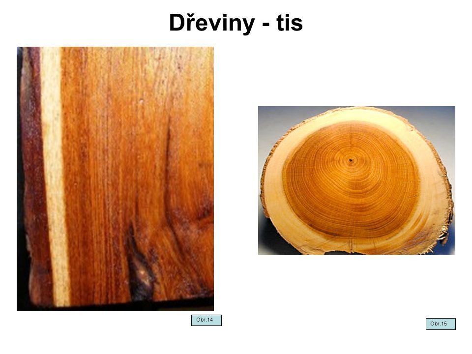 Jehličnaté dřeviny - kontrolní test Jak se liší habitus jehličnaté dřeviny rostoucí osaměle a v porostu.