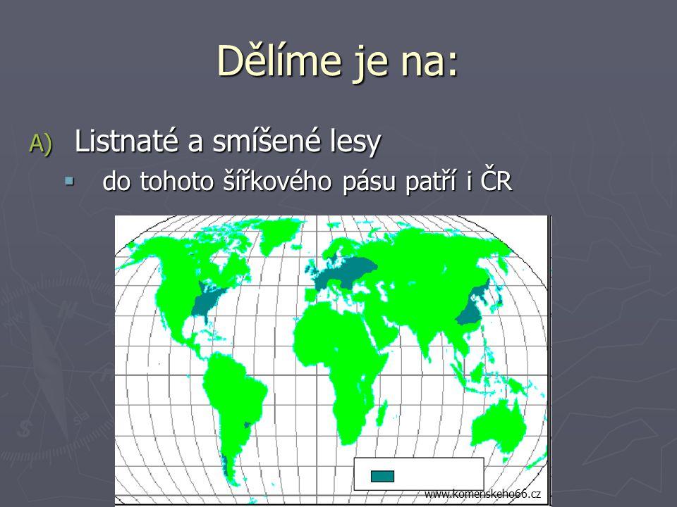 Dělíme je na: A) Listnaté a smíšené lesy  do tohoto šířkového pásu patří i ČR www.komenskeho66.cz