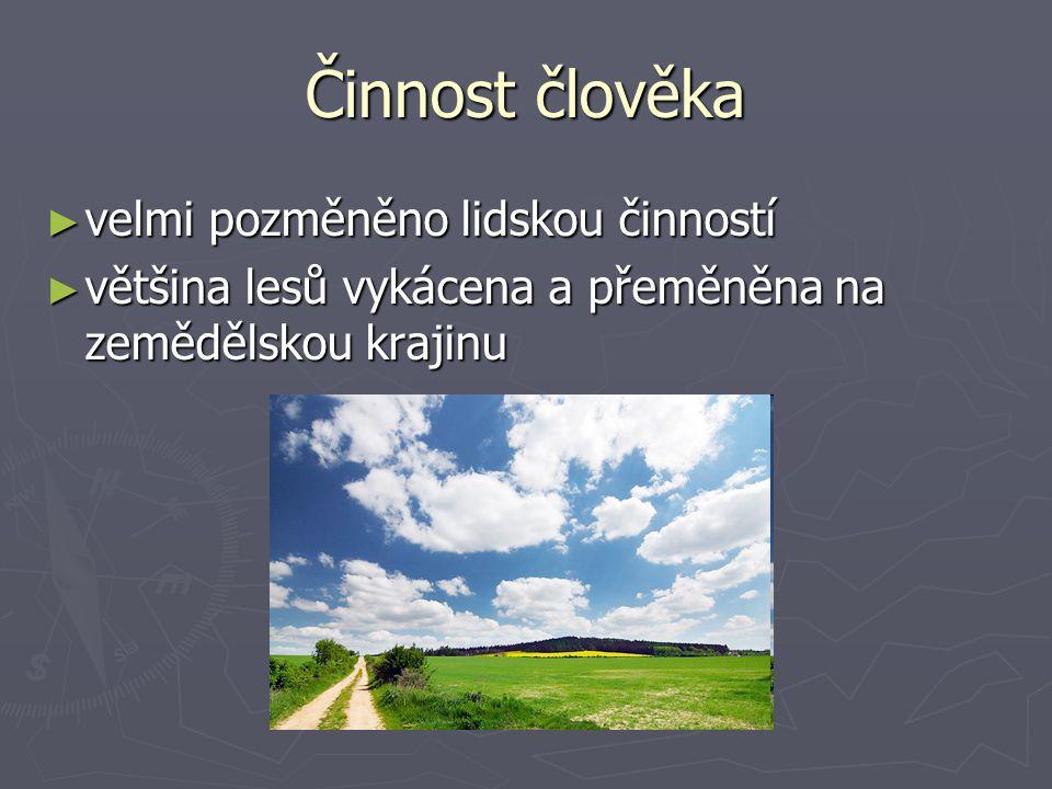 Činnost člověka ► velmi pozměněno lidskou činností ► většina lesů vykácena a přeměněna na zemědělskou krajinu