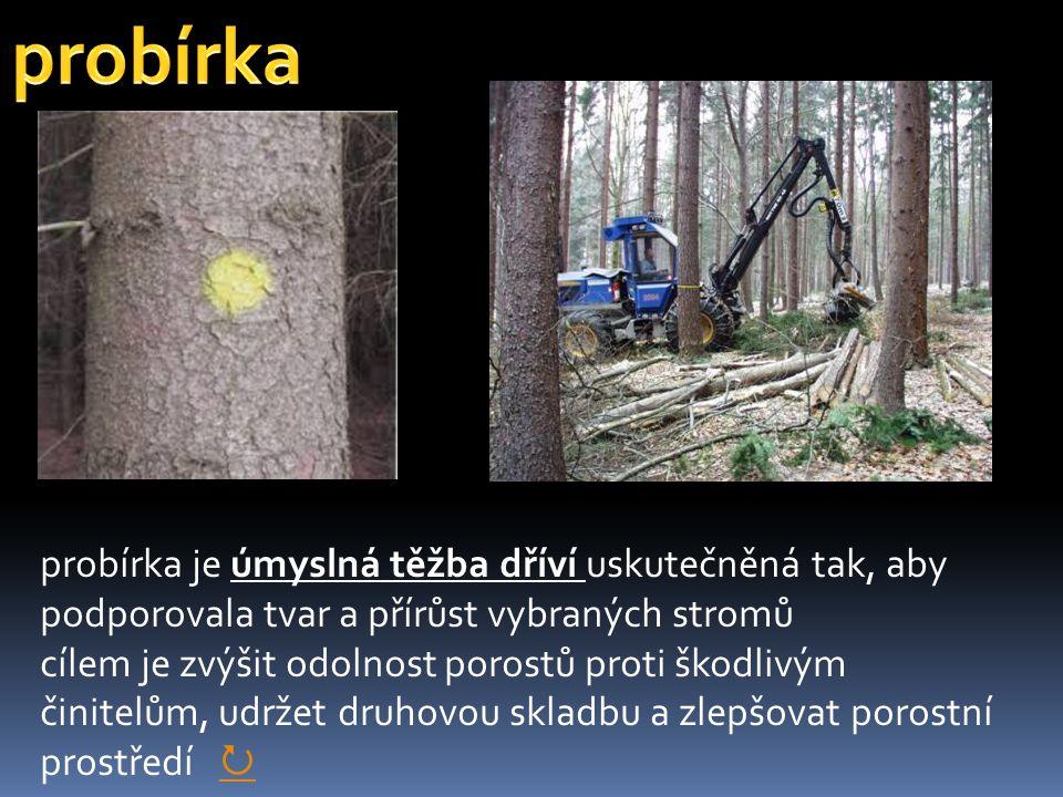 probírka je úmyslná těžba dříví uskutečněná tak, aby podporovala tvar a přírůst vybraných stromů cílem je zvýšit odolnost porostů proti škodlivým čini