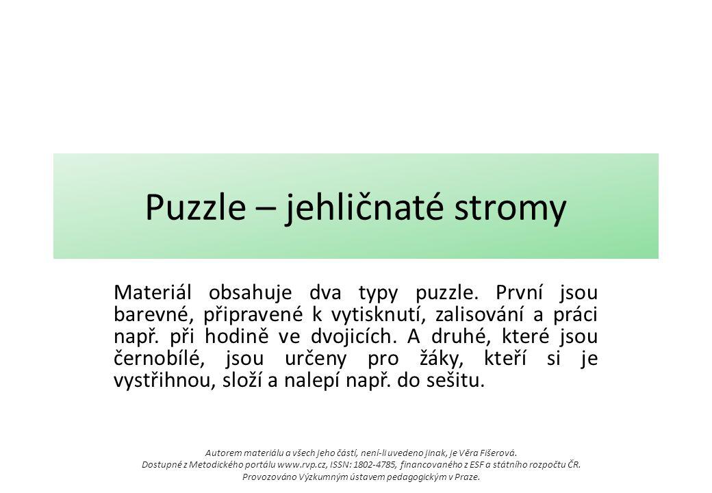 Puzzle – jehličnaté stromy Materiál obsahuje dva typy puzzle. První jsou barevné, připravené k vytisknutí, zalisování a práci např. při hodině ve dvoj