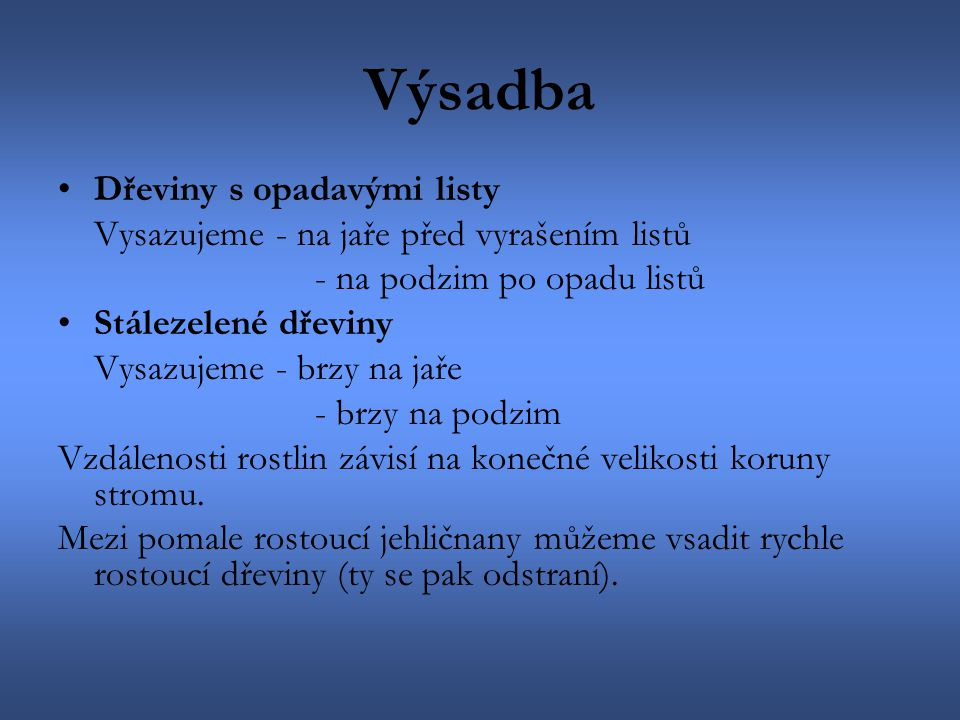 Dřín (Cornus) Zlatice (Forsythia)