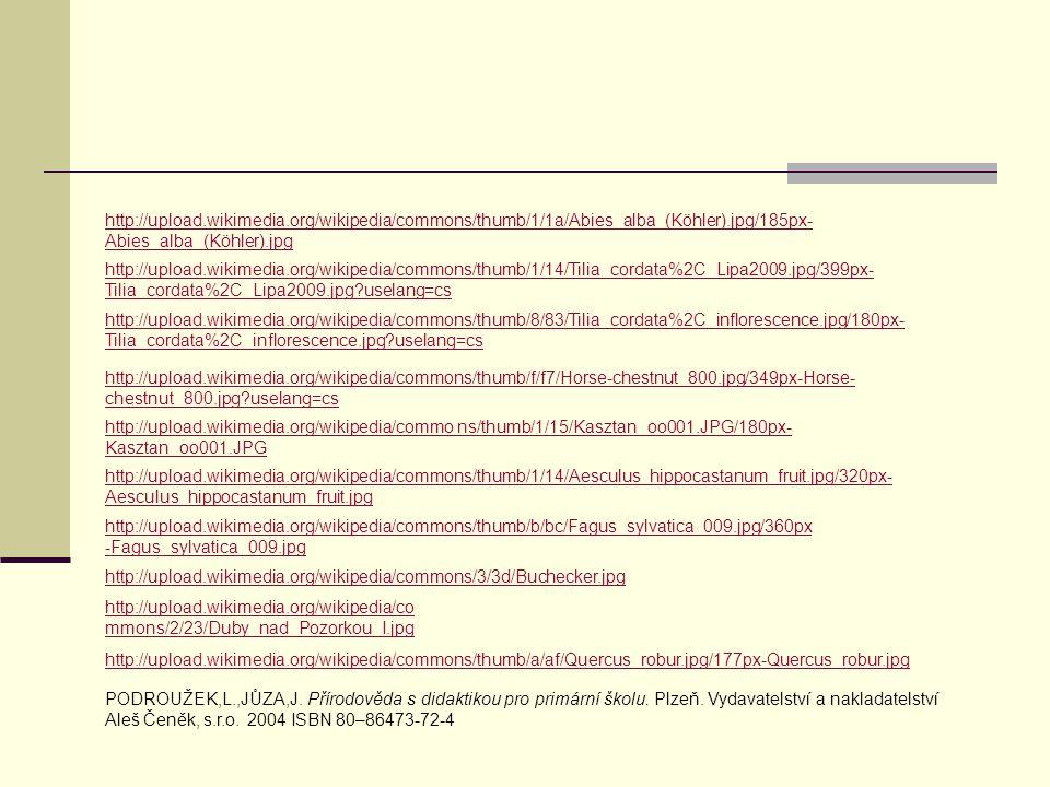 http://upload.wikimedia.org/wikipedia/commons/thumb/8/83/Tilia_cordata%2C_inflorescence.jpg/180px- Tilia_cordata%2C_inflorescence.jpg?uselang=cs http: