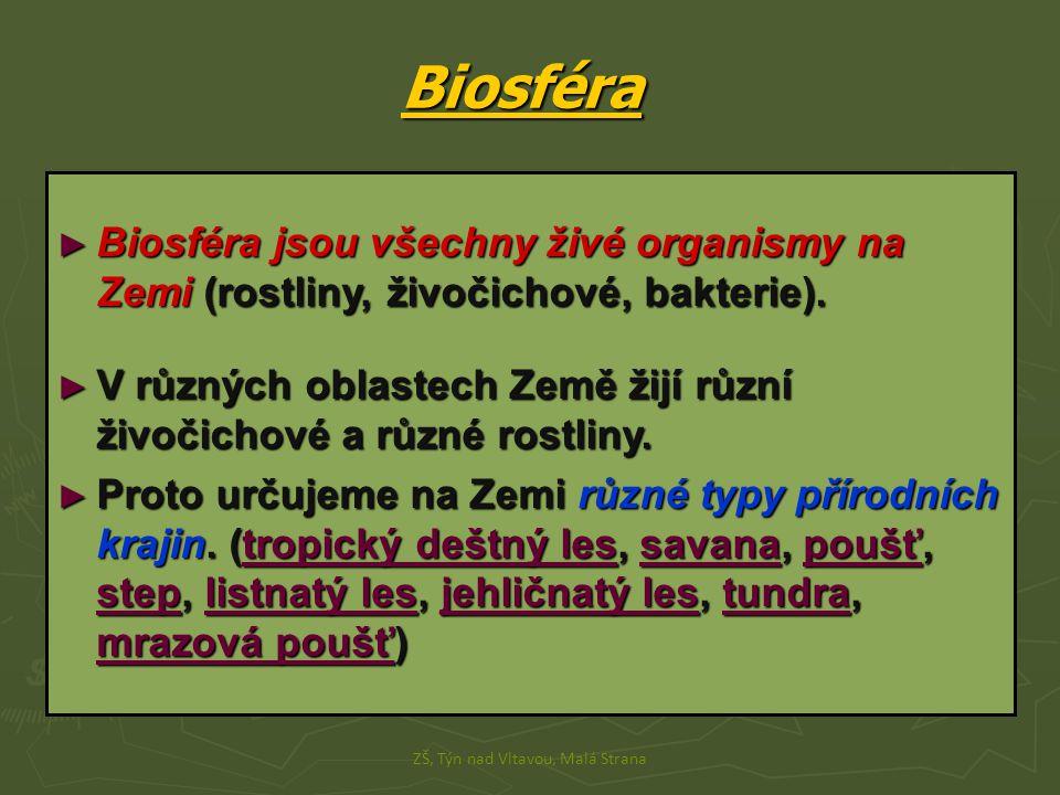 Biosféra ► Biosféra jsou všechny živé organismy na Zemi (rostliny, živočichové, bakterie). ► V různých oblastech Země žijí různí živočichové a různé r