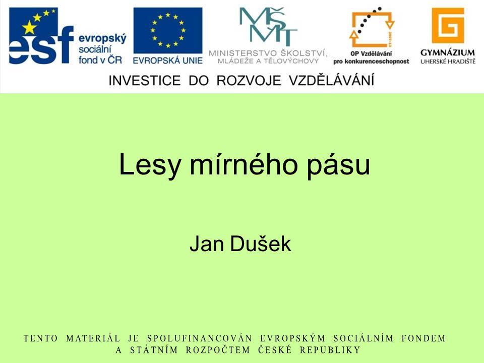 Lesy mírného pásu Jan Dušek