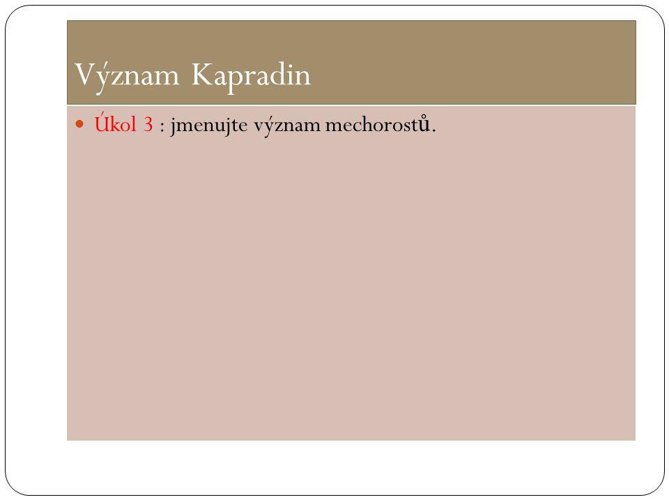 Význam Kapradin Úkol 3 : jmenujte význam mechorost ů.