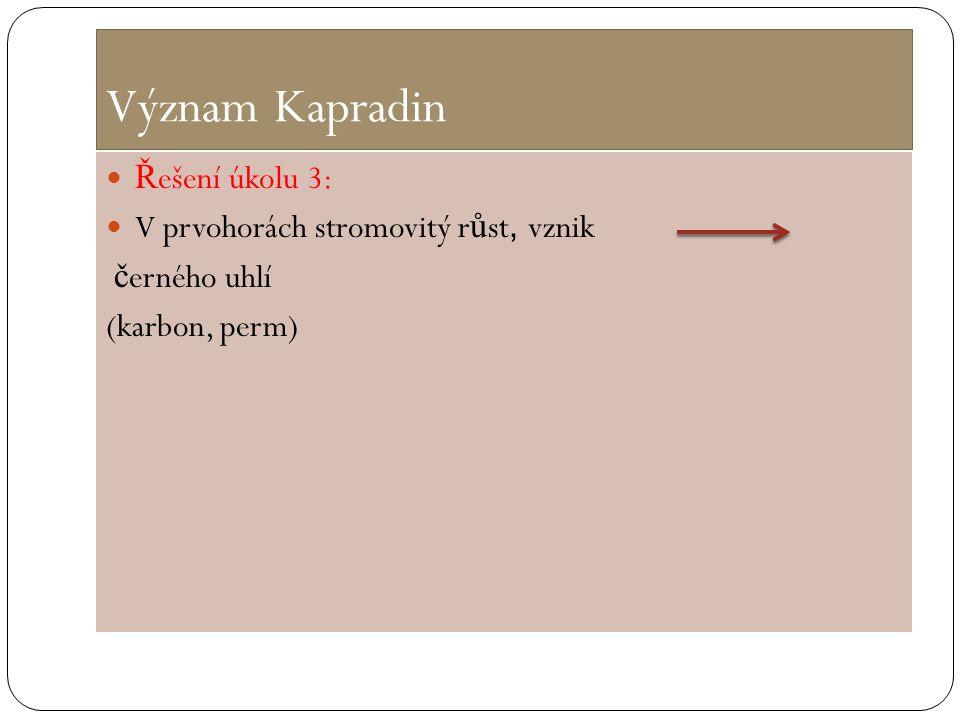 Význam Kapradin Ř ešení úkolu 3: V prvohorách stromovitý r ů st, vznik č erného uhlí (karbon, perm)