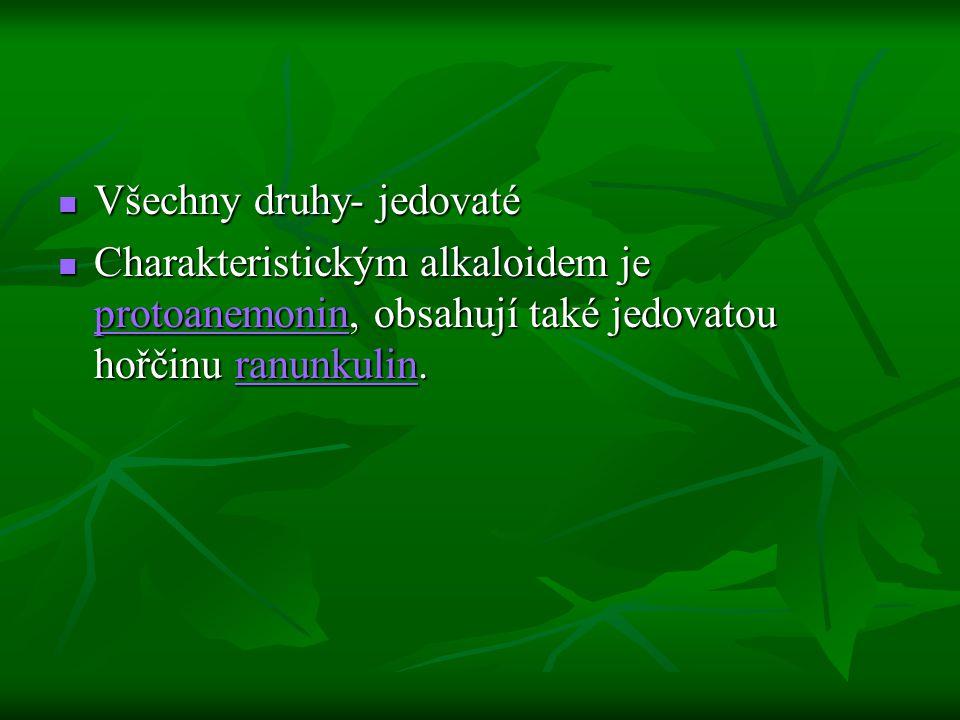 Všechny druhy- jedovaté Všechny druhy- jedovaté Charakteristickým alkaloidem je protoanemonin, obsahují také jedovatou hořčinu ranunkulin. Charakteris