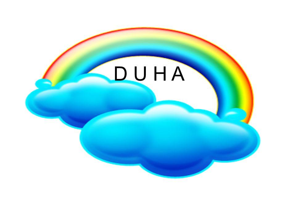 D U H A