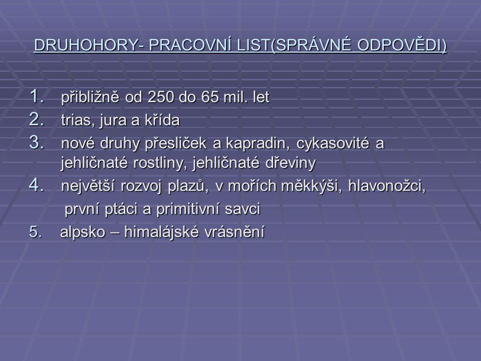 DRUHOHORY- PRACOVNÍ LIST(SPRÁVNÉ ODPOVĚDI) 1. přibližně od 250 do 65 mil. let 2. trias, jura a křída 3. nové druhy přesliček a kapradin, cykasovité a