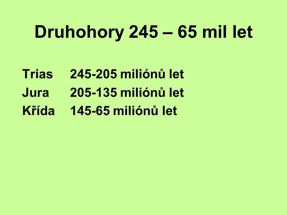 Druhohory 245 – 65 mil let Trias 245-205 miliónů let Jura 205-135 miliónů let Křída 145-65 miliónů let