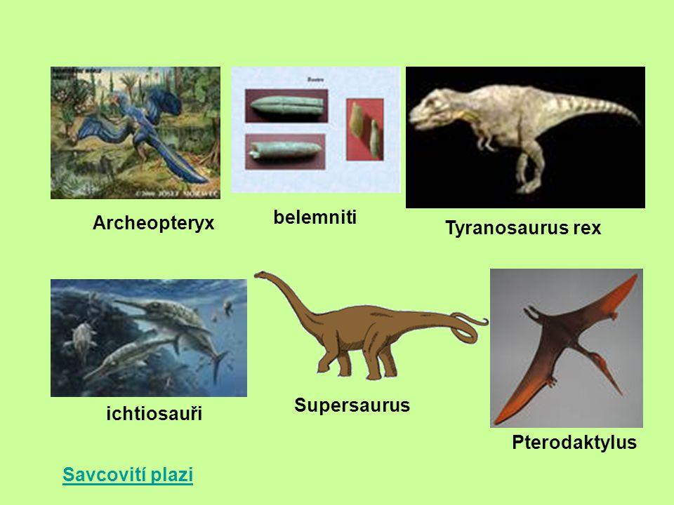 Savcovití plazi Archeopteryx belemniti Tyranosaurus rex ichtiosauři Supersaurus Pterodaktylus