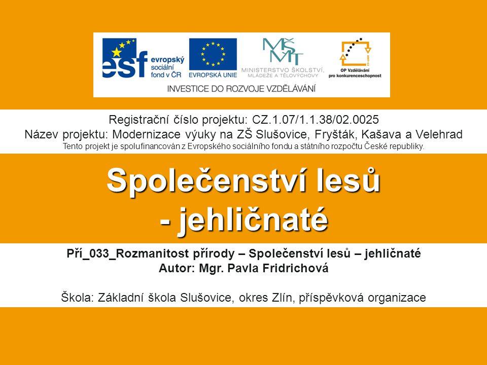 Společenství lesů - jehličnaté Pří_033_Rozmanitost přírody – Společenství lesů – jehličnaté Autor: Mgr.