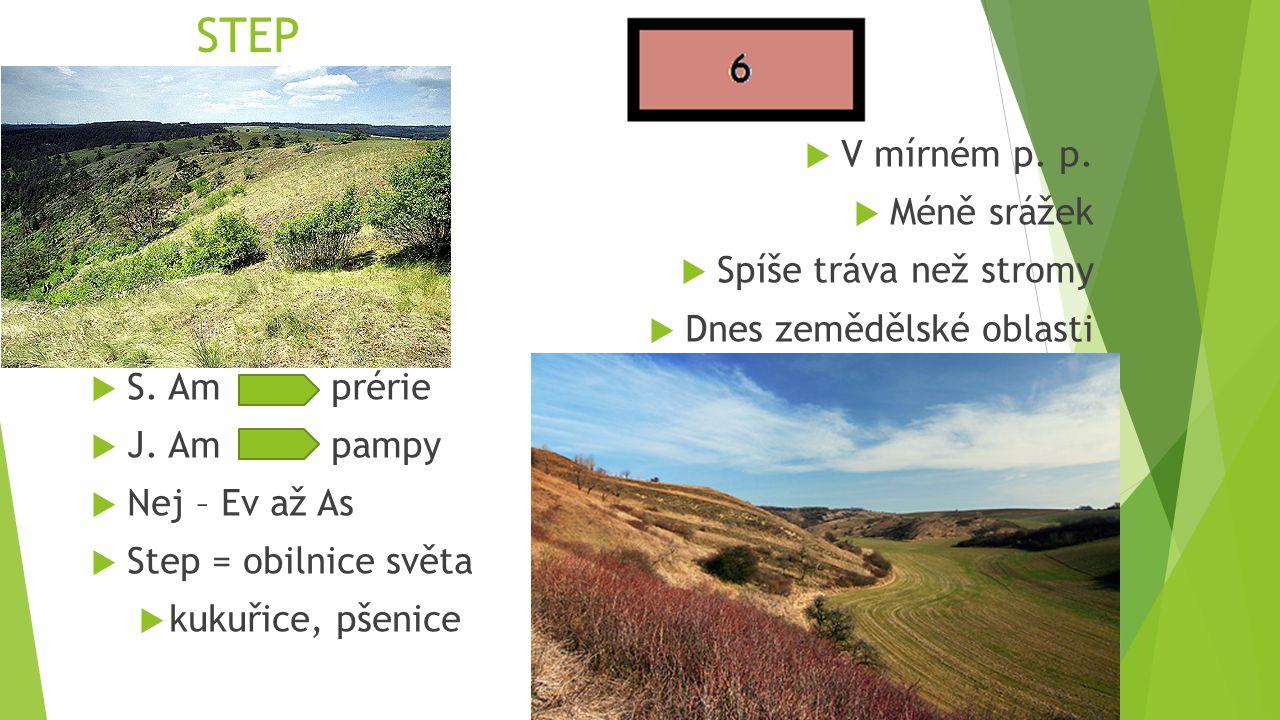 STEP  V mírném p. p.  Méně srážek  Spíše tráva než stromy  Dnes zemědělské oblasti  S. Amprérie  J. Ampampy  Nej – Ev až As  Step = obilnice s