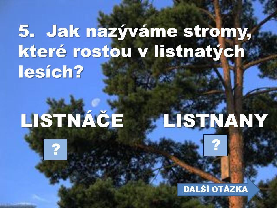 4. Který listnatý strom je považován za náš národní strom? DUBLÍPA ? ? DALŠÍ OTÁZKA