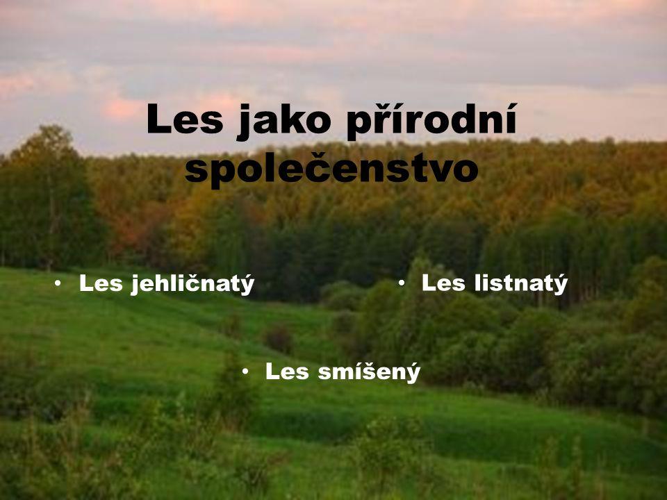 OBSAH LES LES – Les jako přírodní společenstvo – Les jehličnatý – Les listnatý – Les smíšený – Opakování