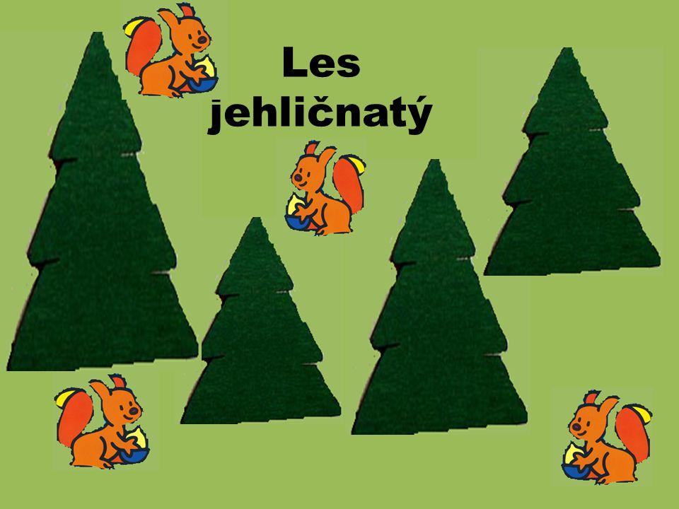 Les jako přírodní společenstvo Les jehličnatý Les listnatý Les smíšený