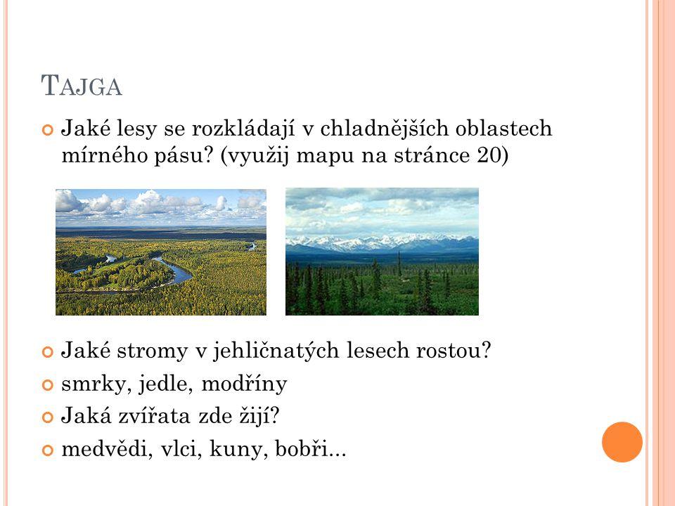 T AJGA Jaké lesy se rozkládají v chladnějších oblastech mírného pásu? (využij mapu na stránce 20) Jaké stromy v jehličnatých lesech rostou? smrky, jed