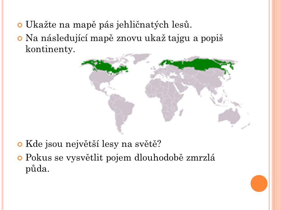 Ukažte na mapě pás jehličnatých lesů. Na následující mapě znovu ukaž tajgu a popiš kontinenty. Kde jsou největší lesy na světě? Pokus se vysvětlit poj