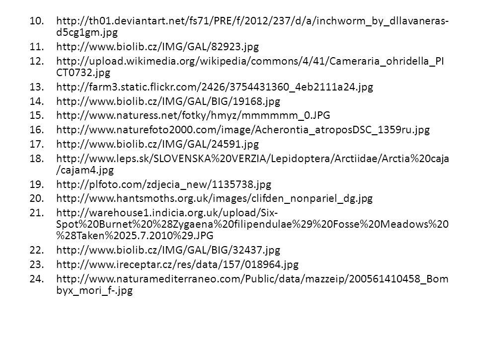 10.http://th01.deviantart.net/fs71/PRE/f/2012/237/d/a/inchworm_by_dllavaneras- d5cg1gm.jpg 11.http://www.biolib.cz/IMG/GAL/82923.jpg 12.http://upload.