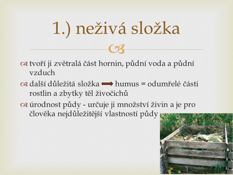   tvoří ji zvětralá část hornin, půdní voda a půdní vzduch  další důležitá složka humus = odumřelé části rostlin a zbytky těl živočichů  úrodnost