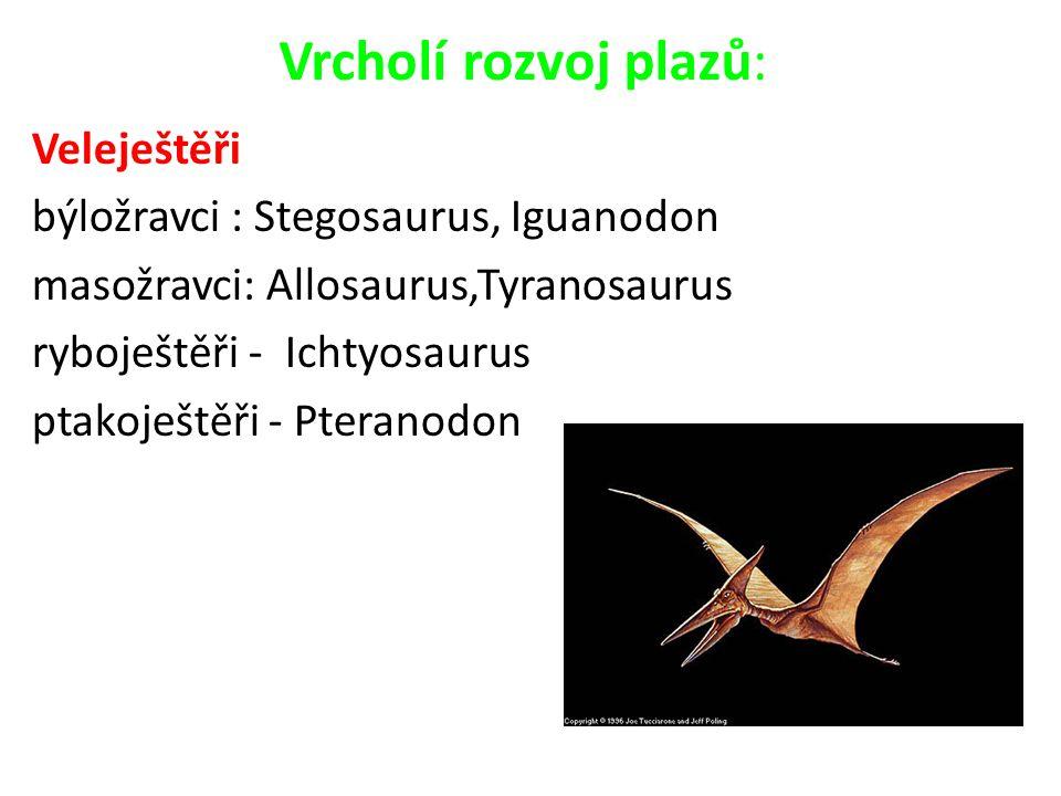 Vrcholí rozvoj plazů: Veleještěři býložravci : Stegosaurus, Iguanodon masožravci: Allosaurus,Tyranosaurus ryboještěři - Ichtyosaurus ptakoještěři - Pt