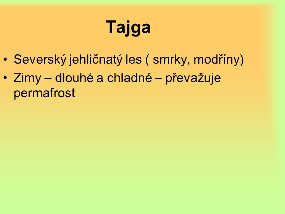 Tajga Severský jehličnatý les ( smrky, modříny) Zimy – dlouhé a chladné – převažuje permafrost