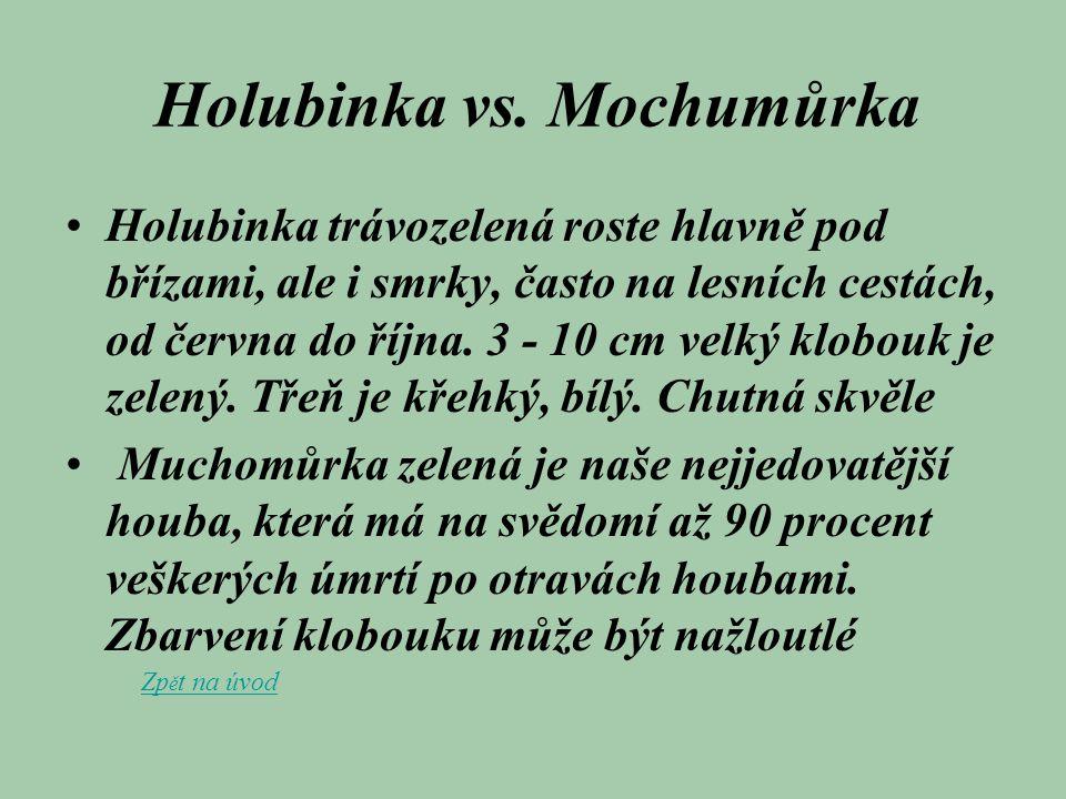 Holubinka vs. Mochumůrka Holubinka trávozelená roste hlavně pod břízami, ale i smrky, často na lesních cestách, od června do října. 3 - 10 cm velký kl