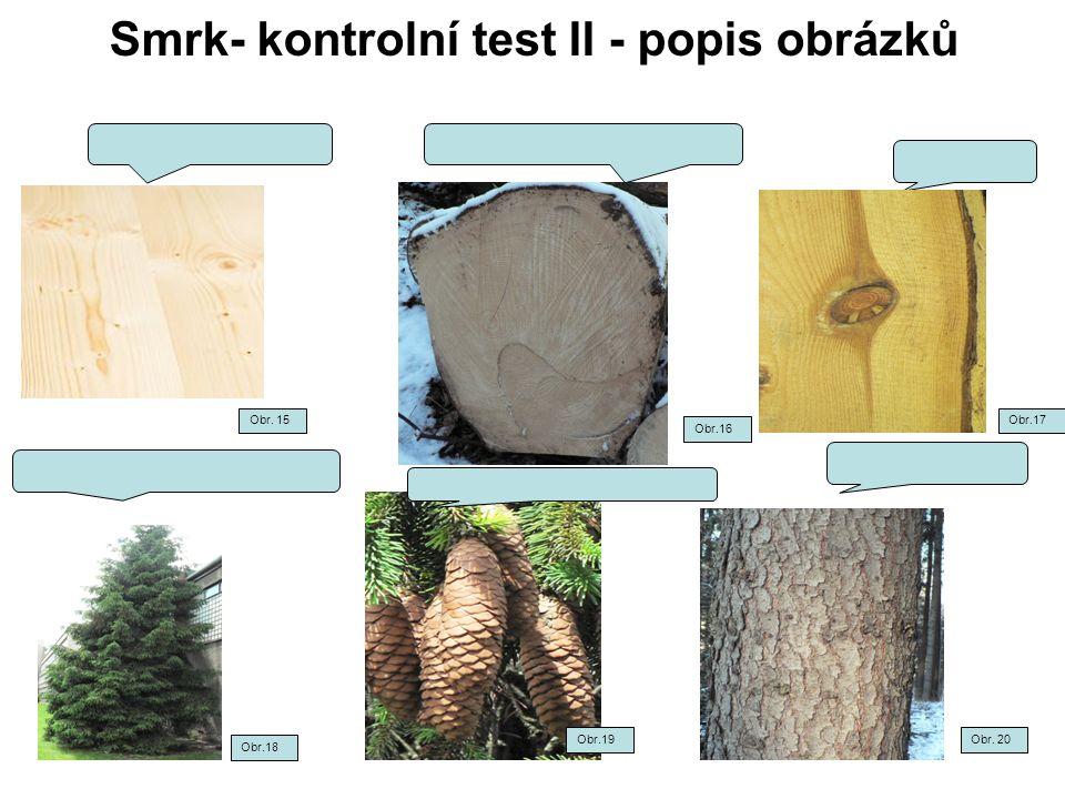Smrk- kontrolní test II - popis obrázků Obr. 15 Obr.16 Obr.17 Obr.18 Obr.19Obr. 20