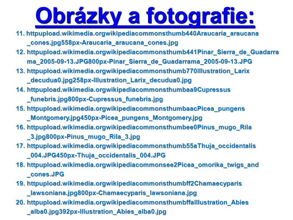 Obrázky a fotografie: 11. httpupload.wikimedia.orgwikipediacommonsthumb440Araucaria_araucana 11. httpupload.wikimedia.orgwikipediacommonsthumb440Arauc
