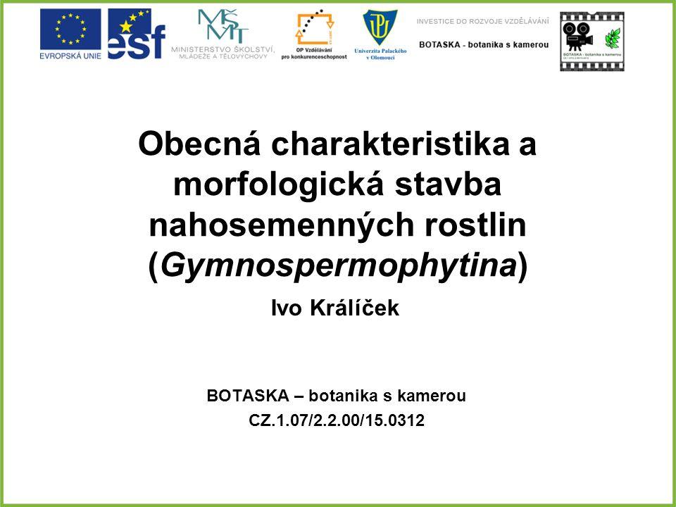 Obecná charakteristika a morfologická stavba nahosemenných rostlin (Gymnospermophytina) BOTASKA – botanika s kamerou CZ.1.07/2.2.00/15.0312 Ivo Králíč