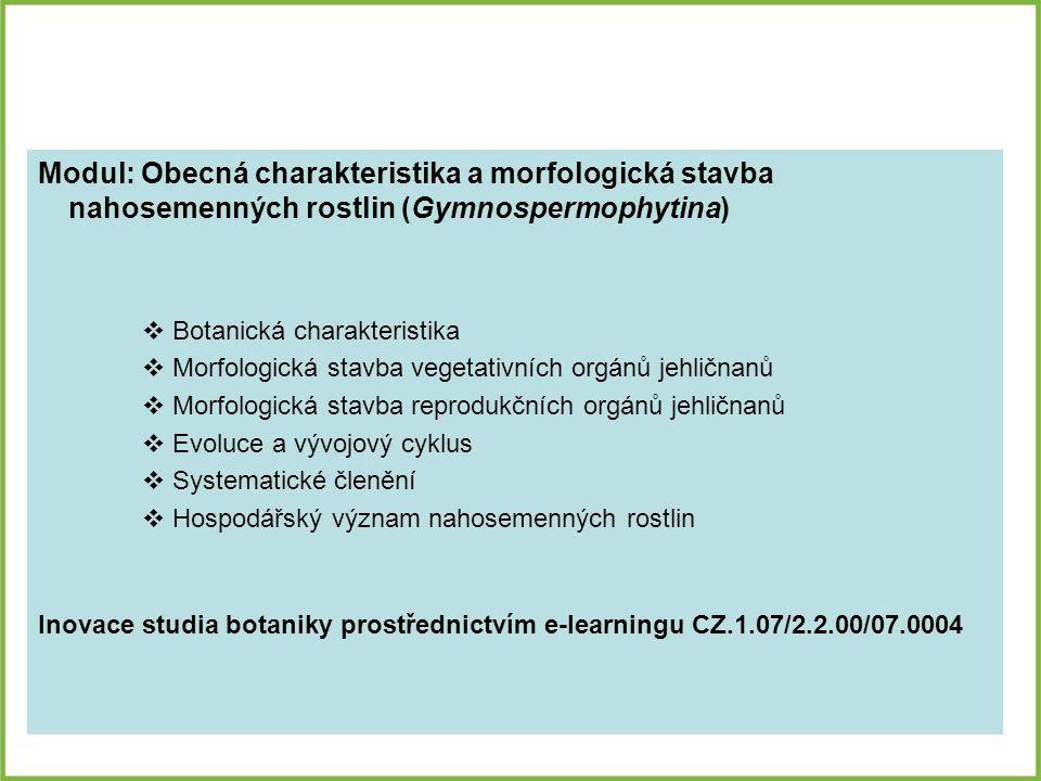 BOTANICKÁ CHARAKTERISTIKA Rostliny s převahou sporofytu nad gametofytem (gametofyt je výrazně potlačen a závislý na sporofytu – představován klíčící pylovou láčkou a zralým zárodečným vakem) Převážně dřeviny s otevřenými kolaterálními svazky (součást xylému tracheidy, ve floému chybí průvodní buňky sítkovic), druhotně tloustnou Oplození vajíčka předchází opylení Rozmnožují se semeny (mnohobuněčný útvar, který vzniká při pohlavním rozmnožování) Na rozdíl od kapraďorostů tvoří semena, proces oplození není závislý na vodě Na rozdíl od krytosemenných rostlin netvoří plody a květy Smrk ztepilý (Picea abies)