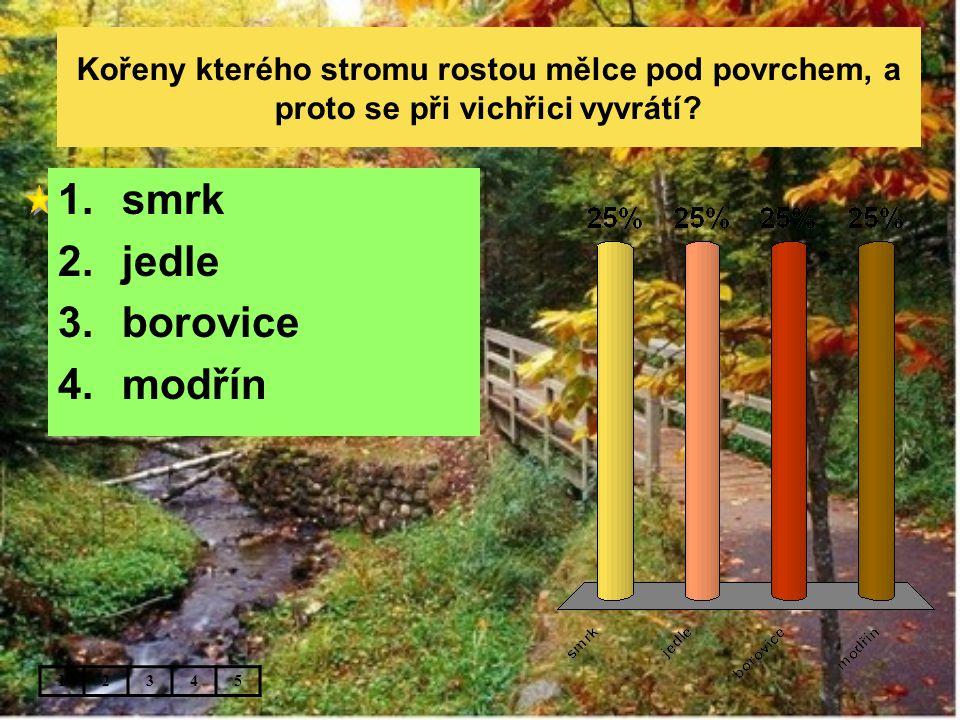 Kořeny kterého stromu rostou mělce pod povrchem, a proto se při vichřici vyvrátí? 12345 1.smrk 2.jedle 3.borovice 4.modřín