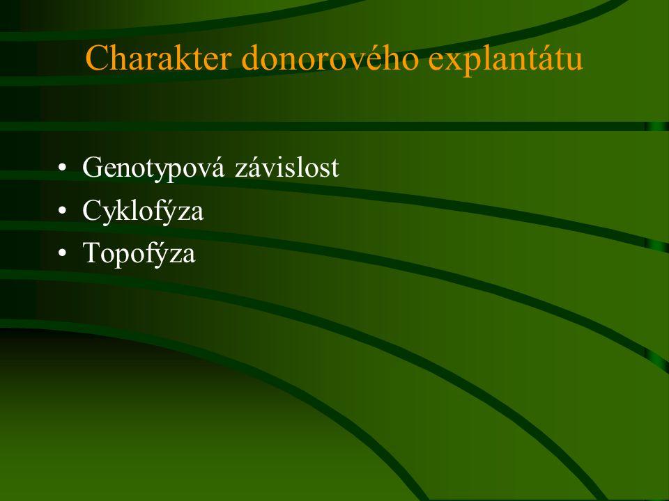 Charakter donorového explantátu Genotypová závislost Cyklofýza Topofýza