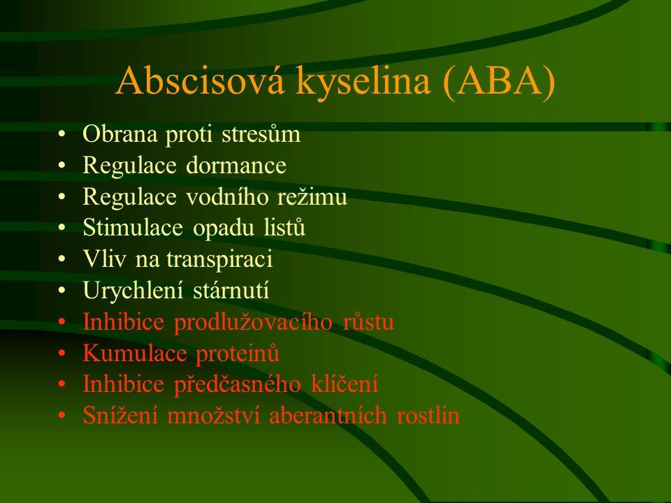 Abscisová kyselina (ABA) Obrana proti stresům Regulace dormance Regulace vodního režimu Stimulace opadu listů Vliv na transpiraci Urychlení stárnutí I