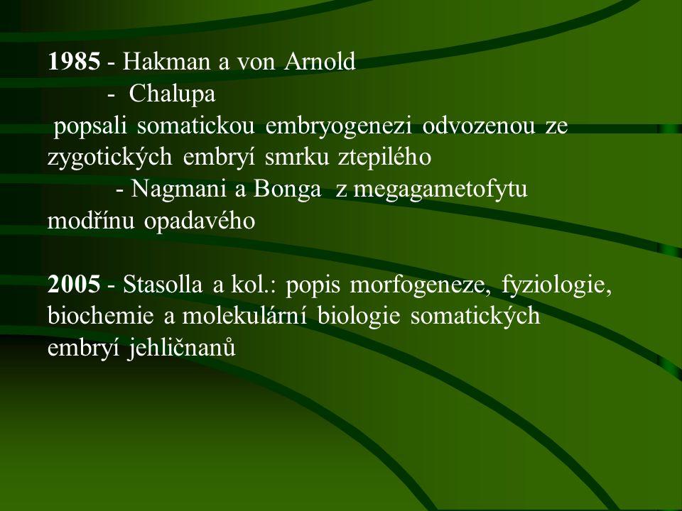 1985 - Hakman a von Arnold - Chalupa popsali somatickou embryogenezi odvozenou ze zygotických embryí smrku ztepilého - Nagmani a Bonga z megagametofyt