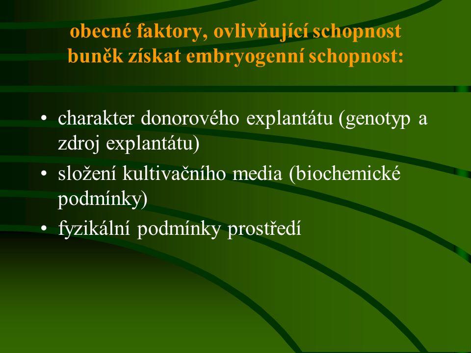 obecné faktory, ovlivňující schopnost buněk získat embryogenní schopnost: charakter donorového explantátu (genotyp a zdroj explantátu) složení kultiva